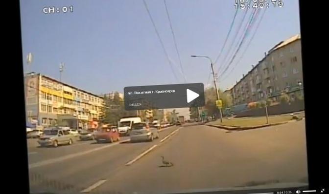 Дурачины на авто и дороги обокрали россию ,авто, ремонт