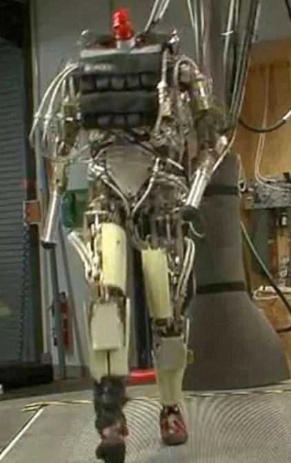 Роботы продолжают лишать людей работы (видео)
