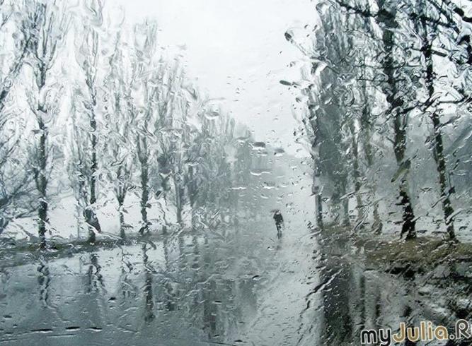 В дождик