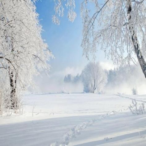 Здравствуй, гостья-зима